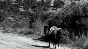 'O İyi İnsanlar, O Güzel Atlar..' ve Banazılı Hacı Emir